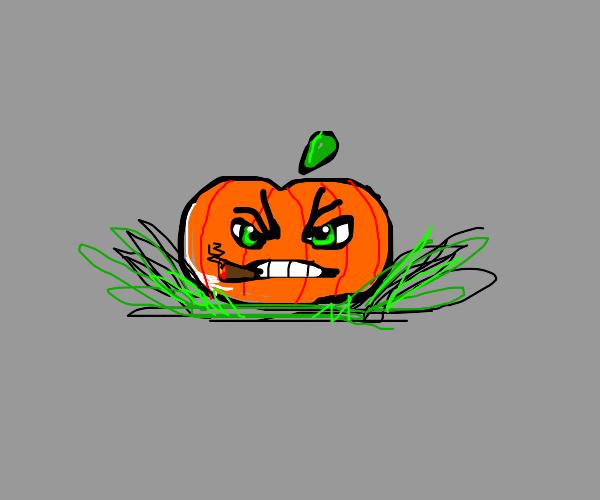 angry smoking pumpkin