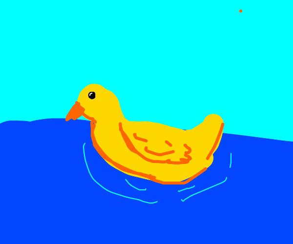 a duck swimming on water