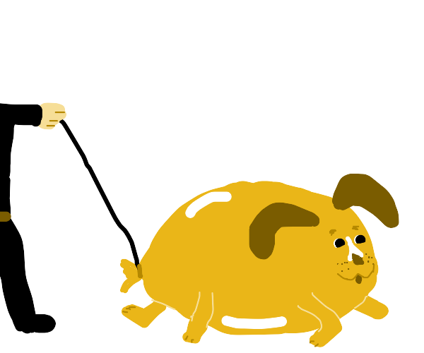 Walking the balloon dog on a leash.