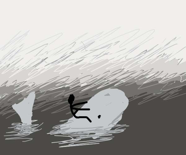 Riding a whale on the sea,  in a dense fog