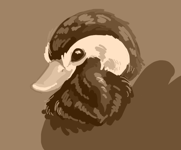 Realistic duck