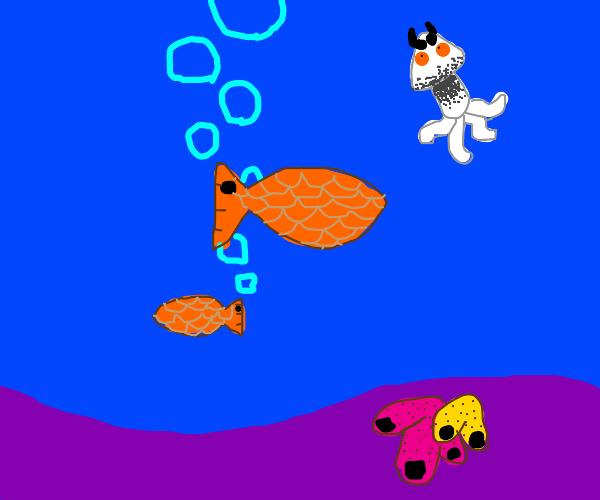 Unconventional Fish
