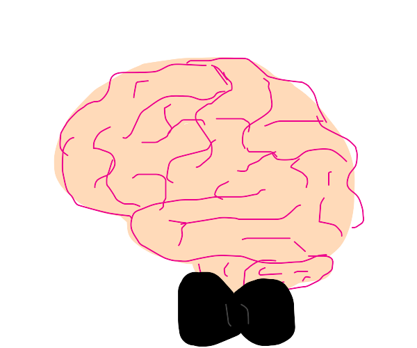 Brain with a bow tie