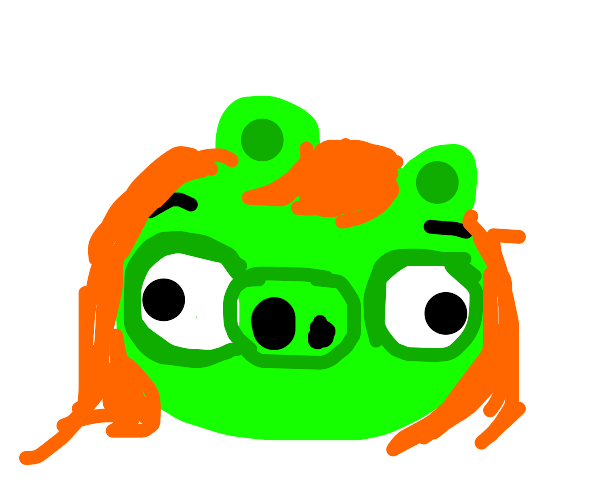 ? red head angry birds pig ig