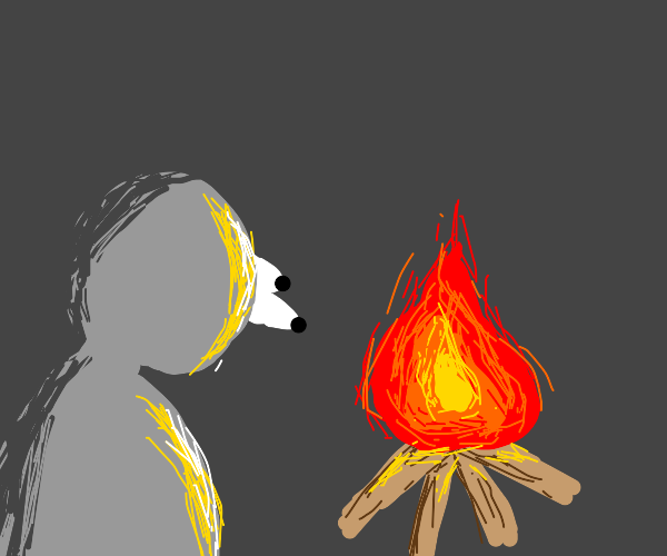 Man staring at fire