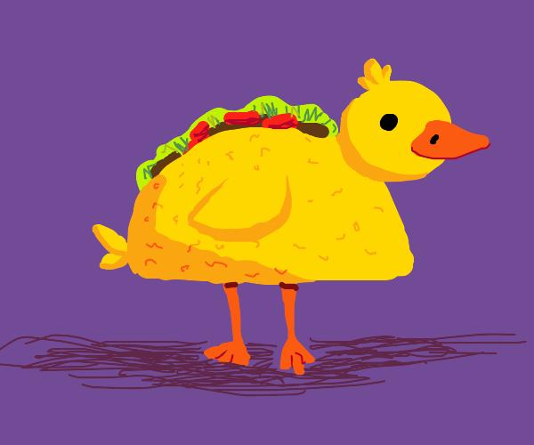 Duck taco