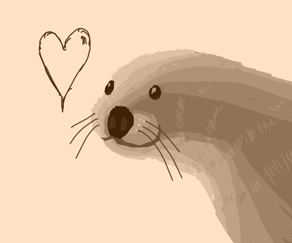 Otter is overwhelmed with love