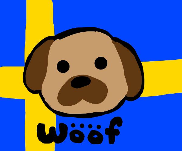 Swedish dog