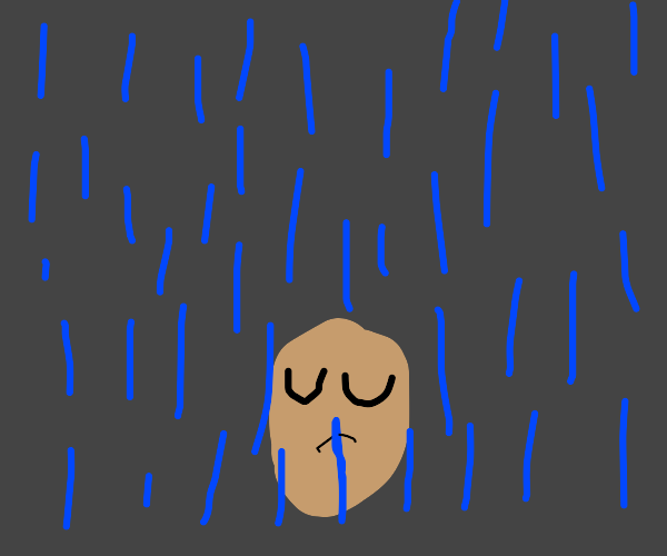 potato in rain ( very sad :'(  )