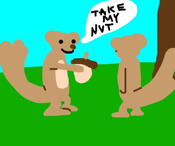 2 squirrels share an acprn