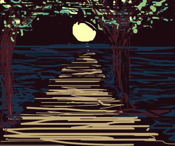 Moon shining through mangroves