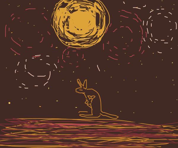 Kangaroos Camping Under a Starry Sky