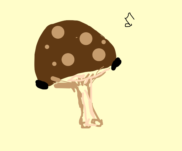 mushrooms and airpods