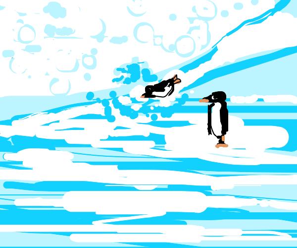 Penguin flies past penguin walking on water