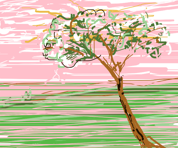 a landscape with a tree