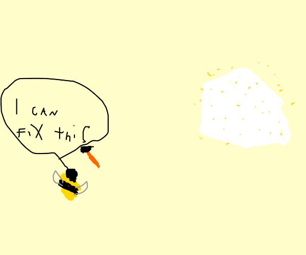 Bee repairs hive