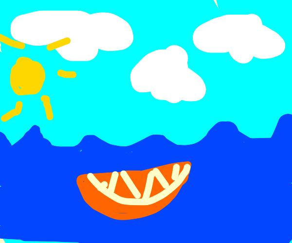 orange slice in the ocean