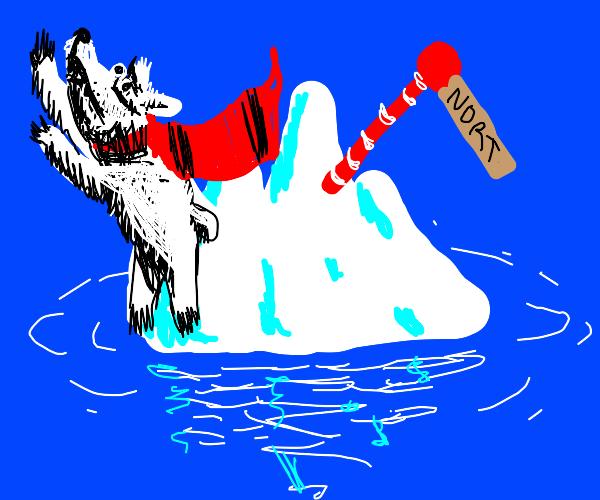 Flying polar bear at north pole