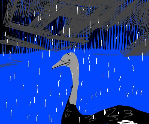 A depressed ostrich