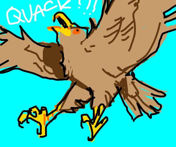 Flying quacking eagle