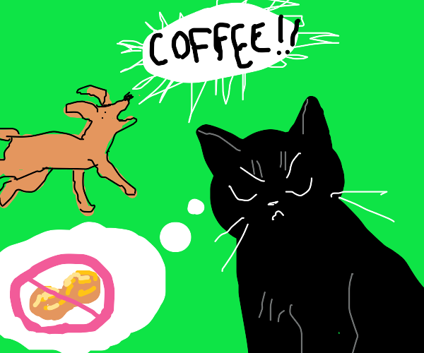 cat thinks no peanut while dog screams coffee