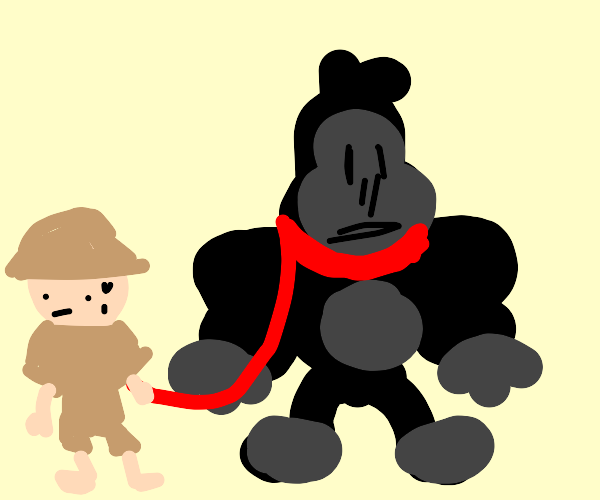 Gorilla on a red leash