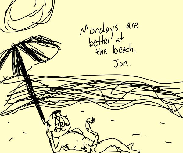 garfield on a beach