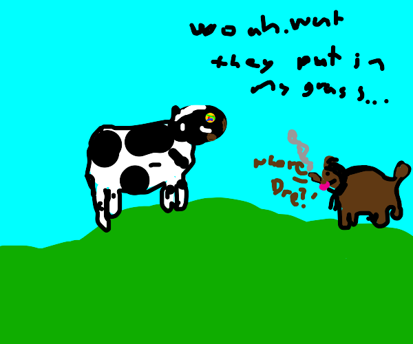 cow trips on acid