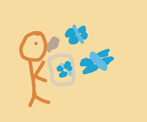 Someone releases blue butterflies