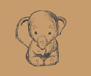 Elephant but one one ear is slightly bigger