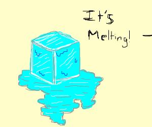 My ice is melting!