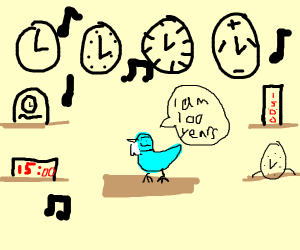 Grandpa bird collecting his clocks