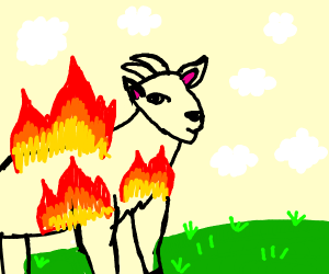 THIS GOAT IS ON FIREEEE