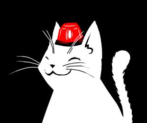 Wee Woo Cat