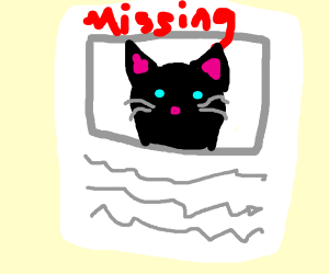 a missing cat poster