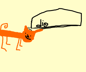 orange cat thinking about its death