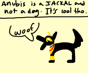 Anubis the house dog
