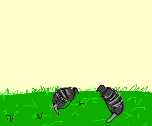 Two armadillos laying in grass