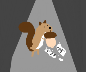 Squirrel and acorn are breaking news