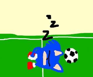 sonic sleeping on a soccer feild