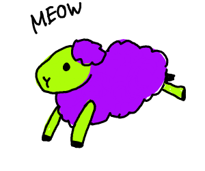 sheep meows