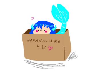 A mermaid in a box