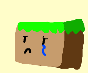 Ugliest minecraft block