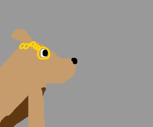 Dog with a monocle