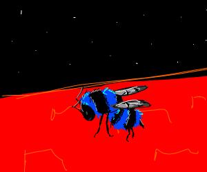Blue bee on mars