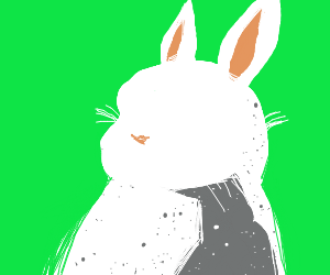 Faceless rabbit