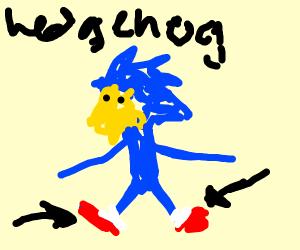 Hedgehog wearing Shoes
