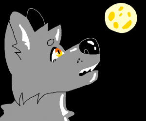 wolf(yellow eyed) howling to a full moon