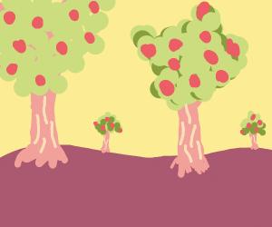 landscape of apple trees