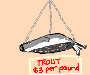 A grey fish that is on sale